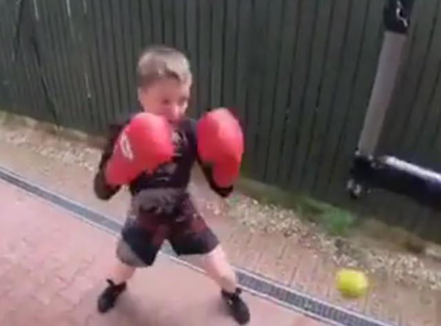 Этот мальчуган сможет постоять за себя