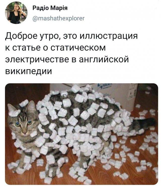 Шутки из Твиттера (25 фото)