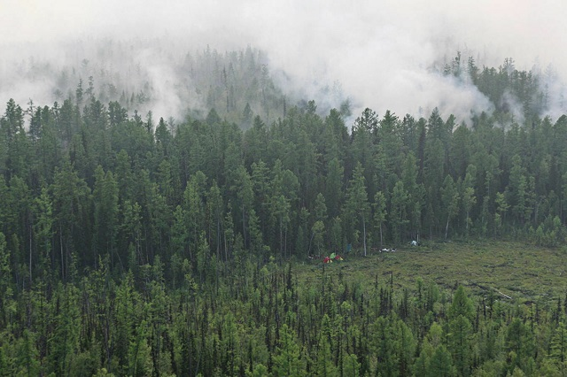В МЧС назвали причину распространения пожаров в Сибири