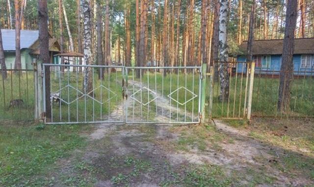 """Пострадавших от наводнения детей из Иркутской области отправили в """"лесной ад"""""""