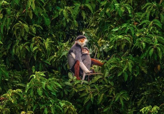 Подборка нежных фотографий с международного конкурса AGORA (20 фото)