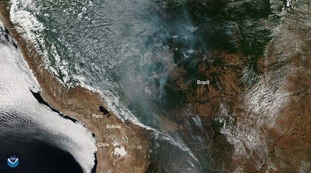NASA показали снимки из космоса горящих лесов Амазонии (9 фото + видео)
