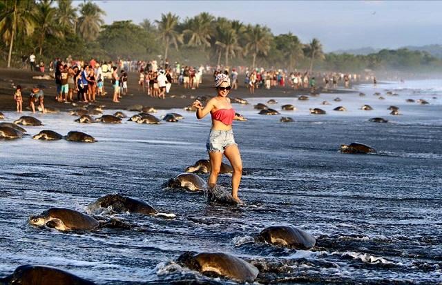 Именно из-за таких людей во многих странах недолюбливают туристов (23 фото)