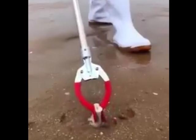 Что можно найти на пляже