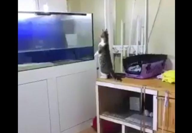 Не лучший из него рыбак