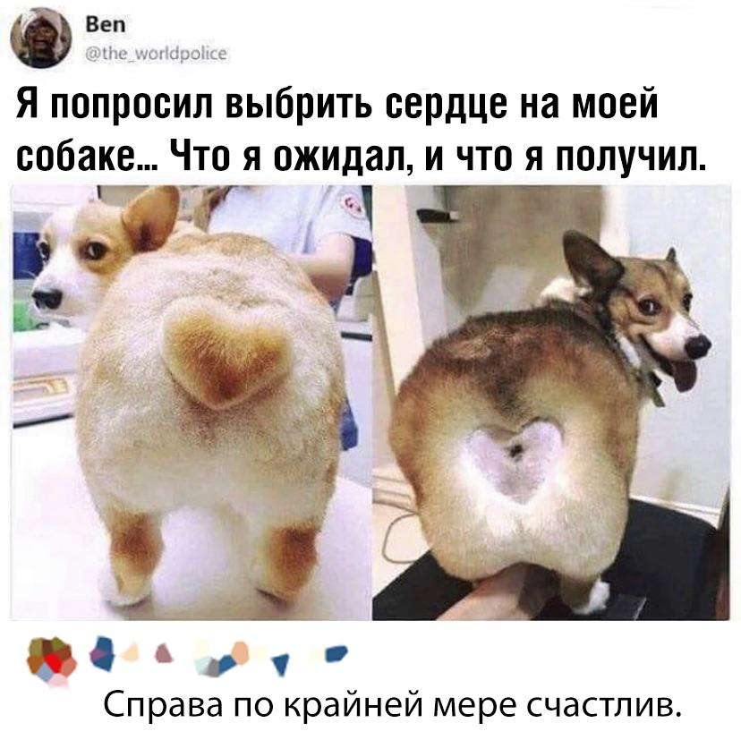 1568018006_podb_38.jpg