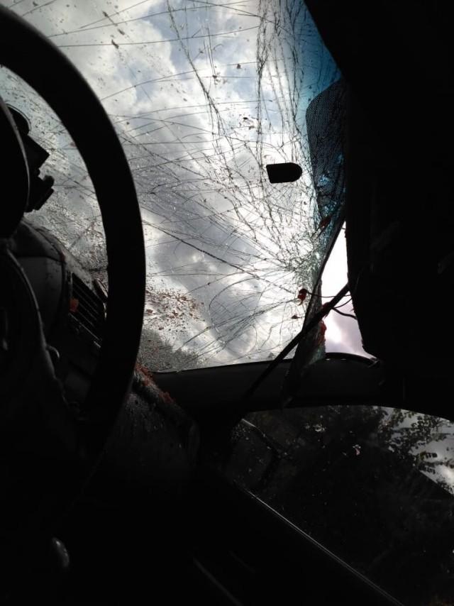В Подольске на крышу автомобиля с 14 этажа сбросили арбуз (4 фото + видео)