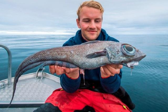 Студент из Норвегии отправился на рыбалку и выловил нечто инопланетное (2 фото)