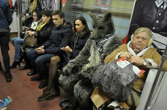 Дивные обитатели метрополитена (30 фото)