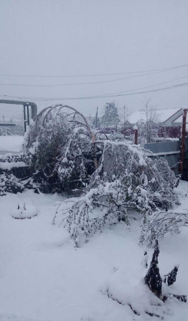 Мощный снегопад в Хабаровском крае (6 фото + видео)