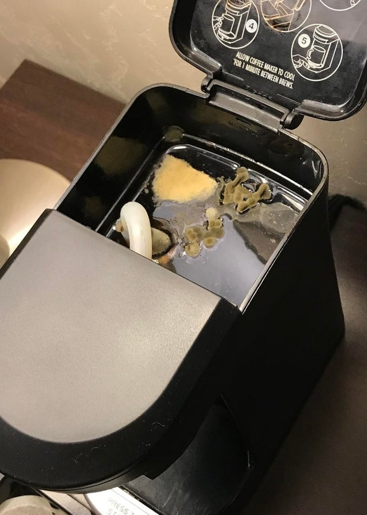 Подборка фотографий испорченного отдыха в отеле (17 фото)
