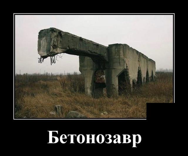 1569498007_demotivatory_19.jpg