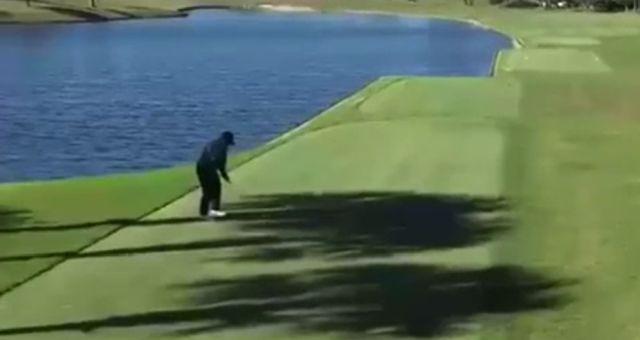 Мужчина играл в гольф, а выиграл в Duck Hunt