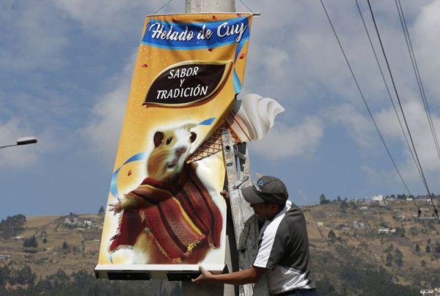 Эквадорское мороженное с секретным ингредиентом (6 фото)