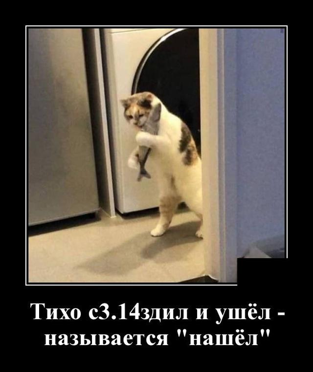 1571316338_demotivatory_02.jpg