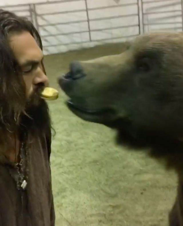 Отважный или безрассудный: Джейсон Момоа покормил медведя изо рта (3 фото + видео)