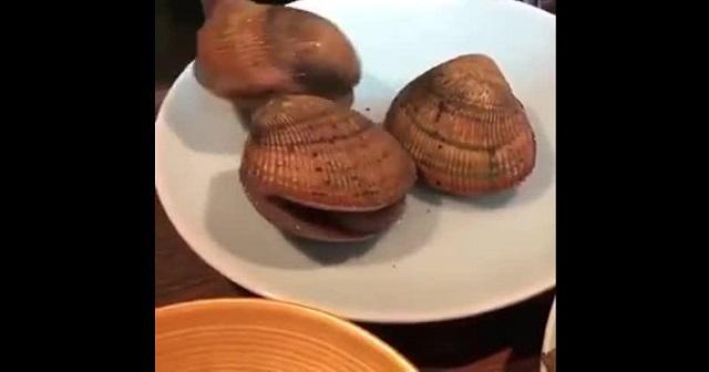 Официант, кажется, мои моллюски недоварены