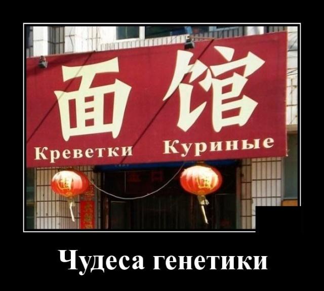 1573134118_demotivatory_19.jpg