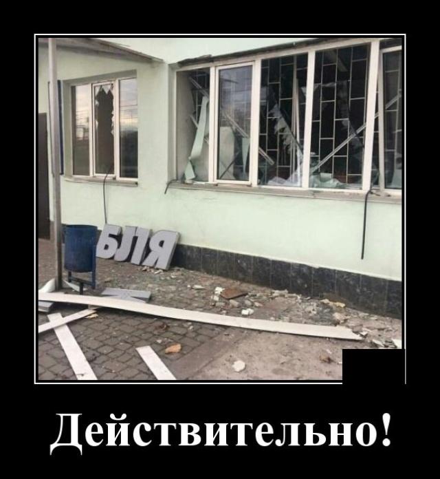 1573739403_demotivatory_04.jpg
