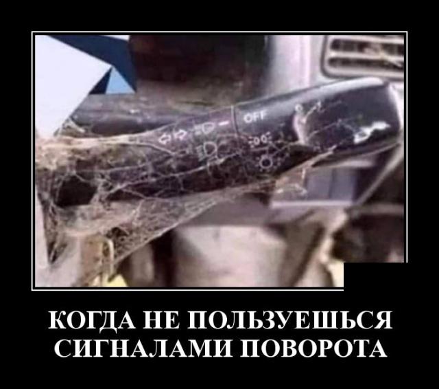 1573739463_demotivatory_12.jpg