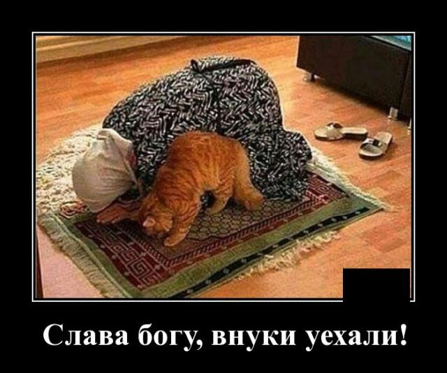 1574431038_demotivatory_13.jpg