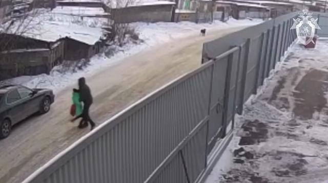В Иркутске педофил пытался похитить 9-летнюю девочку, но ее спас 16-летний парень (2 видео)