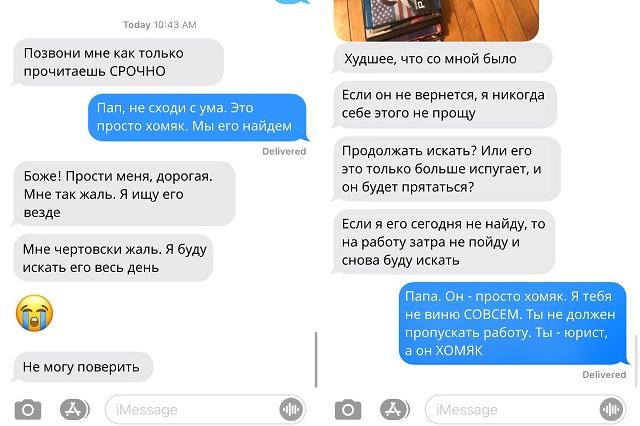 Забавная история о том, как отец потерял любимого хомяка своей дочки (3 фото)