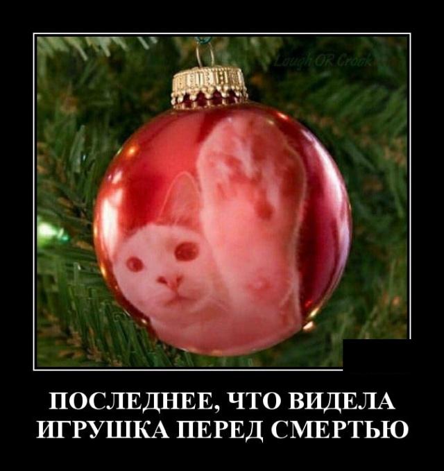 1575553313_demotivatory_12.jpg
