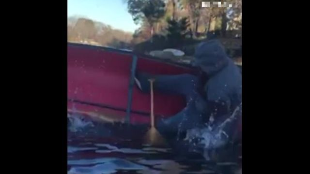 Как потопить лодку одним броском