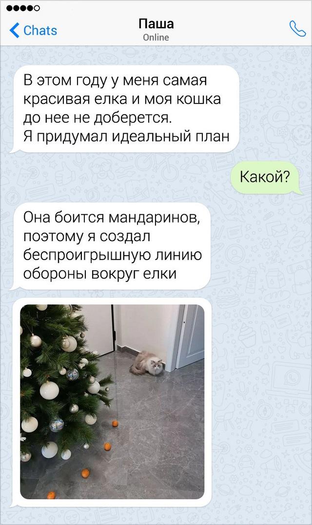 Забавные новогодние переписки (14 скриншотов)