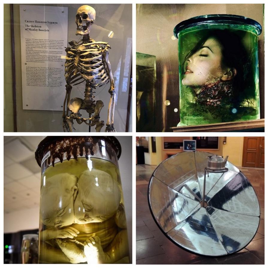 Необычные экспонаты Кунсткамеры (6 фото)
