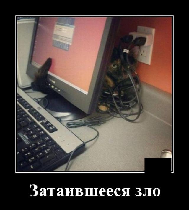 1576160163_demotivatory_01.jpg