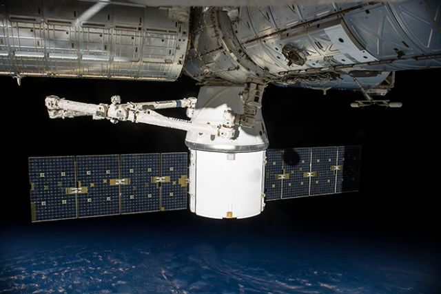 Илон Маск решил отправить на МКС каннабис