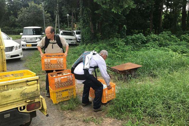 Японские пенсионеры стали носить экзоскелеты, чтобы продолжать работать (2 фото)