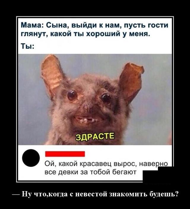 1576768090_demotivatory_19.jpg