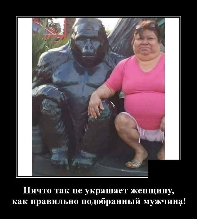 1576768140_demotivatory_18.jpg