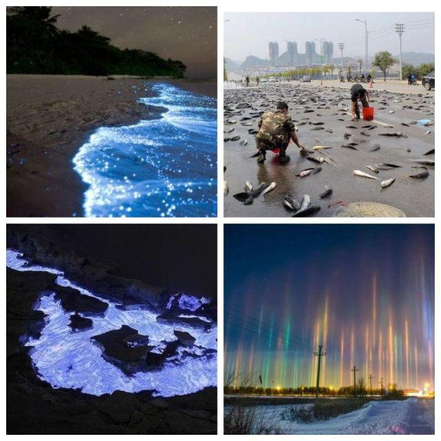 ТОП-10 удивительных природных феноменов (10 фото)