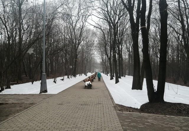 В Москве выпал первый снег… Или это все же не снег?
