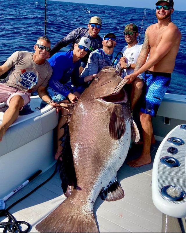 Американец поймал 158-килограммового окуня, которому 50 лет (2 фото)