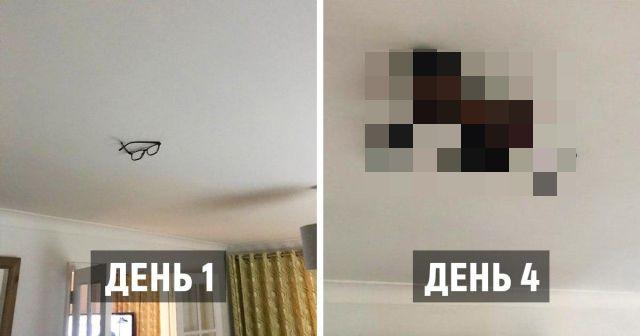 Парень приклеивал вещи своего отца к потолку, а тот догадался только после пропажи пульта (5 фото)
