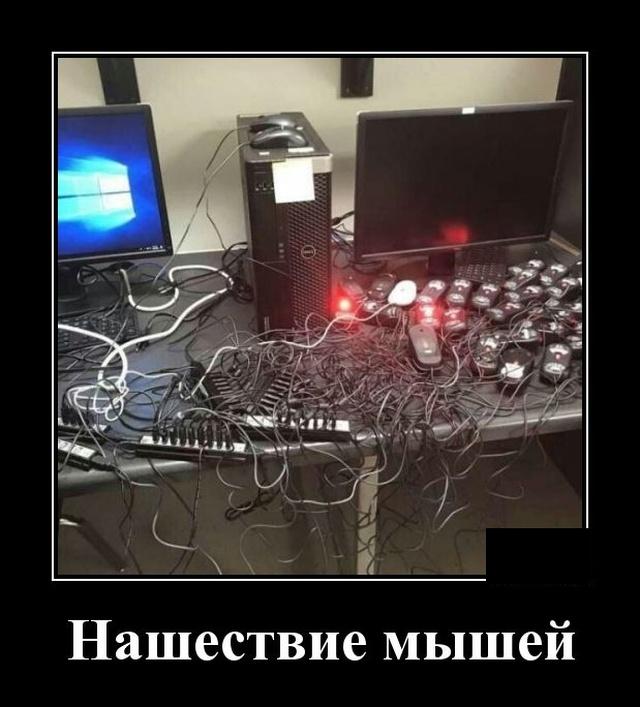 1579183757_demotivatory_07.jpg