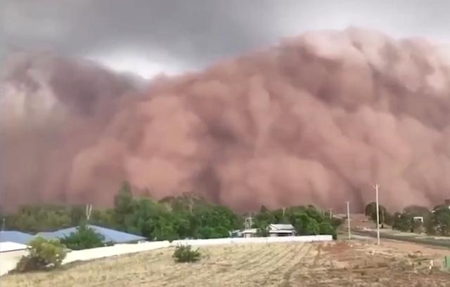 Новая беда в Австралии (2 видео)