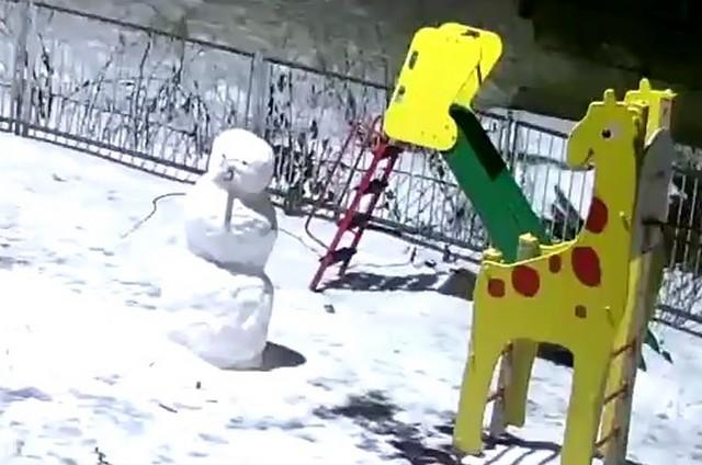 Неравный бой со снеговиком
