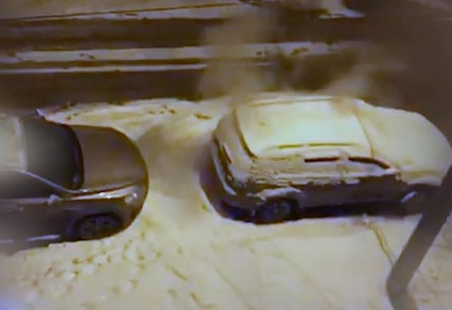 Девушка в Новомосковске голыми руками потушила автомобиль