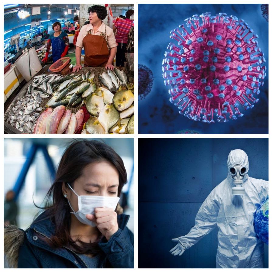 Коронавирус: происхождение, симптомы, лечение, профилактика (10 фото)