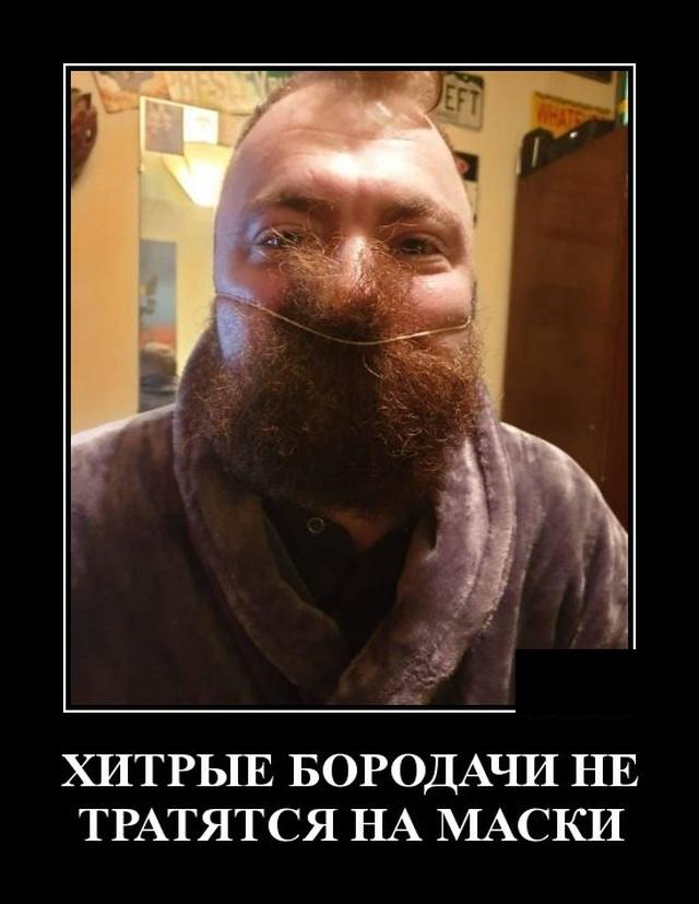 1580395161_demotivatory_18.jpg