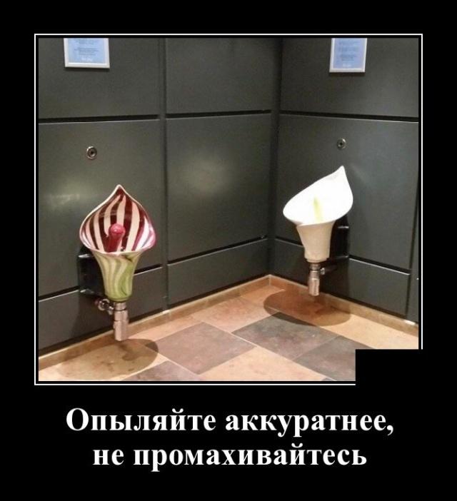 1580395236_demotivatory_14.jpg