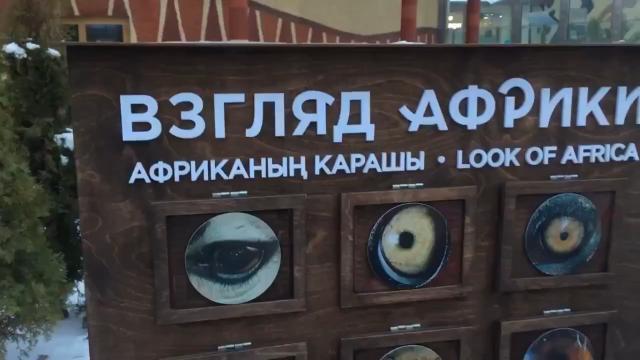 Сотрудники зоопарка в Казани тонко намекают