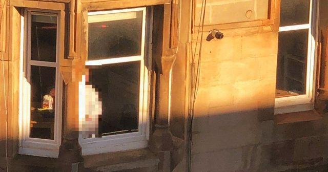 Она просто стоит и смотрит: соседи зловеще разыграли девушку (10 фото + видео)