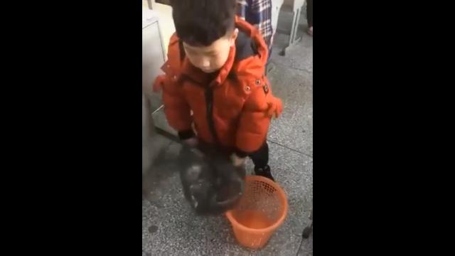 Лайфхак с мусорным пакетом от маленького китайского мальчика
